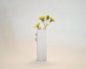 little rectangular vase